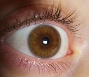 varie_occhio_590