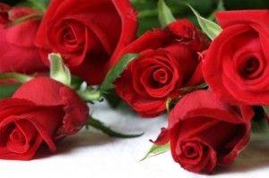 varie_rose-300x199